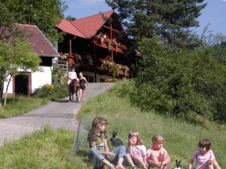 Röcklehof - Wolfach vacation rentals