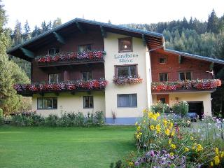 Landhaus Alexa 1 Bedroom apartment with Balcony - Eben im Pongau vacation rentals