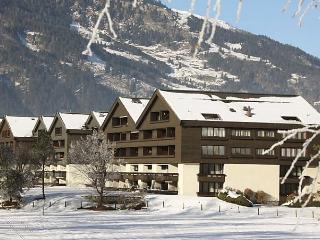 Alexander - Bad Hofgastein vacation rentals