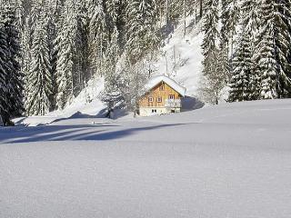 Plaik-Häusl - Saint Martin am Tennengebirge vacation rentals