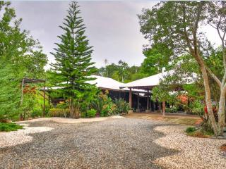 Charming mountain cottage with japanese garden - Jarabacoa vacation rentals