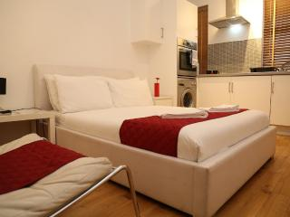 Spacious Double Studio in Central London - London vacation rentals