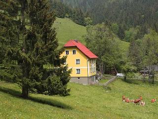 Krechen Alm - Pernegg an der Mur vacation rentals