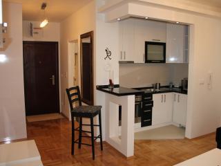 Beautiful 1 bedroom Condo in Banja Luka - Banja Luka vacation rentals