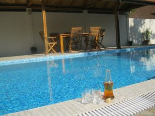 Villa Rosen & Apart/Pool OWNER DISCOUNT FOR 2016! - Sozopol vacation rentals