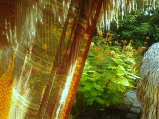 Mayflower - Corozal Town vacation rentals
