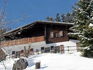 Les 3 Marmottes - Le Paquier-Montbarry vacation rentals