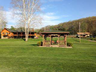 Perfect Lodge with Deck and Internet Access - Gaines vacation rentals
