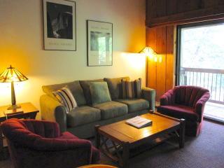 1 bedroom Condo with Short Breaks Allowed in Yosemite National Park - Yosemite National Park vacation rentals