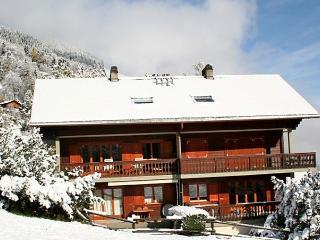 Brocard - Val D'illiez vacation rentals