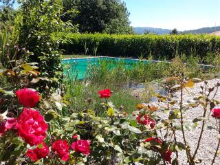 Rural house with garden and natural pool. - Povoa de Lanhoso vacation rentals