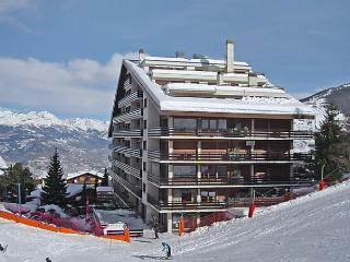 Olympic - Nendaz vacation rentals