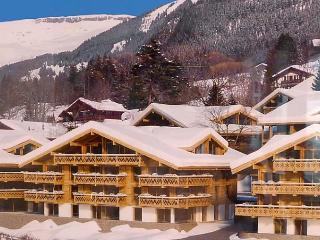 Chalet Achat - Grindelwald vacation rentals