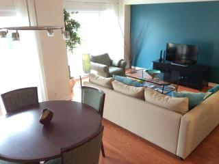 Bright 2 bedroom Townhouse in Ottawa - Ottawa vacation rentals