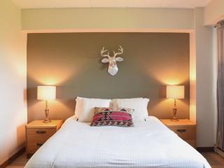 Beautifully Updated Condo Close to Snowshed Lift - Killington vacation rentals