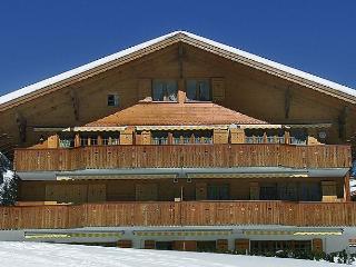 Pfingsteggsunne - Grindelwald vacation rentals