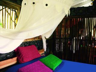 Vanil Vaness - Loft by the river - La Plaine vacation rentals