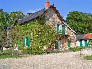 Grand gite dans le parc d'un château de la Loire. - Ternay vacation rentals