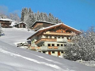 Marina - Aschau im Zillertal vacation rentals
