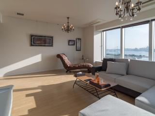 Luxurious family stay at 3 bedroom ap - Chiyoda vacation rentals
