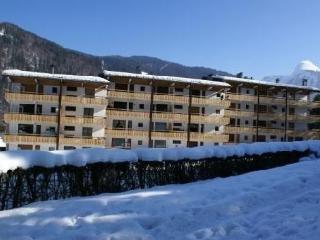 Morzine-charmant appartement tout confort 3*** - Morzine-Avoriaz vacation rentals