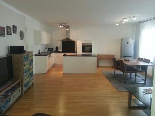 Luxus FeWo Soldic - Nuremberg vacation rentals