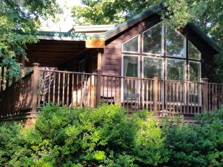Perfect Lodge with Internet Access and A/C - Fredericksburg vacation rentals