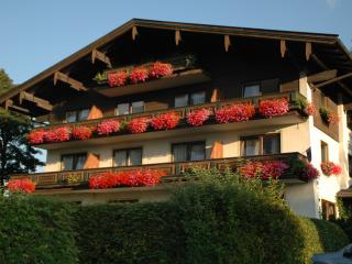 Sunny apartment in Zell am See - Kaprun region - Niedernsill vacation rentals