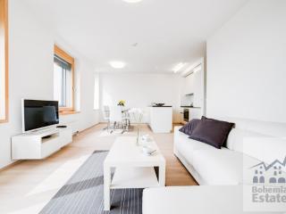 Comfortable 2 bedroom Brno Apartment with Internet Access - Brno vacation rentals