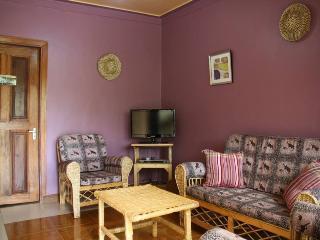 WELO HOUSE-2 BR /2 BATH - Kampala vacation rentals