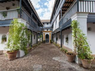 [713] Beautiful apartment with Spanish courtyard - Seville vacation rentals