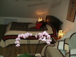 Comfortable Bed and Breakfast with Garden and Wireless Internet - Tourlaville vacation rentals