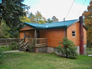 Nice Cabin with Deck and Dishwasher - Confluence vacation rentals