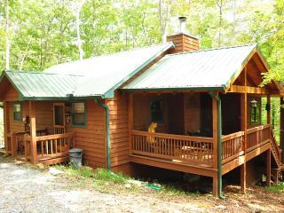 Private, Pet Friendly Cabin in Blue Ridge Georgia - Jeffersonville vacation rentals