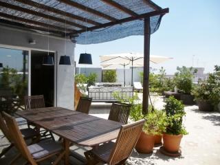Penthouse Vincent - Valencia vacation rentals