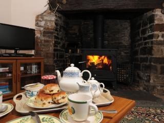 Adipit Cottage located in Bideford, Devon - Bideford vacation rentals