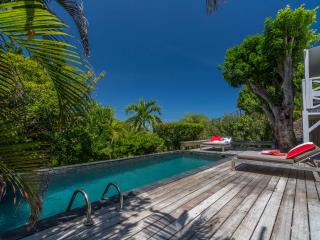 Comfortable Saint Barthelemy Villa rental with A/C - Saint Barthelemy vacation rentals