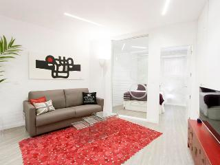 Nice Condo with Internet Access and Television - San Sebastian vacation rentals