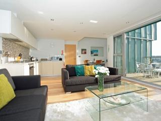 Fistral View, 51 Zinc located in Newquay, Cornwall - Newquay vacation rentals