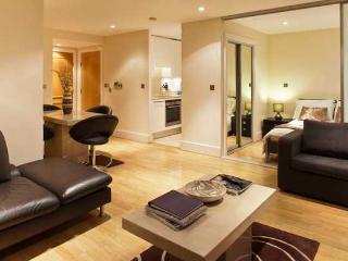 Astonishing 1 Bedroom Apartment, with Private Balcony and River View, in Westminster - London vacation rentals