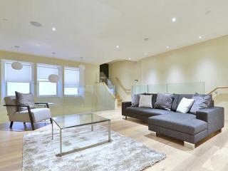 Elite 2 Bedroom Spacious Apartment - London vacation rentals