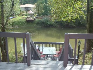 Convenient River Front Home - Ellijay vacation rentals