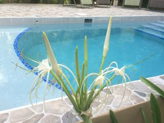 J & S Limited Guest House - Caye Caulker vacation rentals