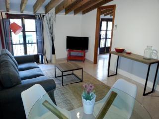 ATICO 3B - Palma de Mallorca vacation rentals
