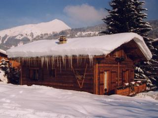 Le Petit Liseron Chalet Morzine - Pied des pistes - Morzine-Avoriaz vacation rentals