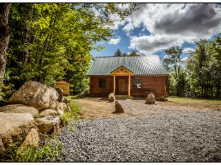 Adirondack Cabin Mountain Retreat - Old Forge vacation rentals