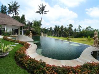 Nice Villa with Internet Access and A/C - Mambal vacation rentals