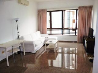 Nice Condo with Internet Access and A/C - Singapore vacation rentals