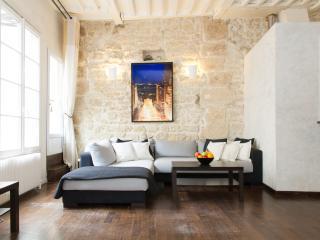 91. STUNNING 2BR APARTMENT ON FAMOUS RUE DE BUCI - Paris vacation rentals