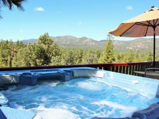 Mountain Top View: Luxury View Home with Spa - Big Bear City vacation rentals